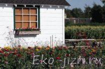 Здесь будет сад! — возможности использования придомовой территории