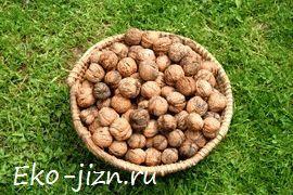 Как выбирать и хранить орехи