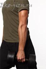 Меню для роста мышц