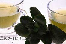 10 рецептов чая для очищения кишечника