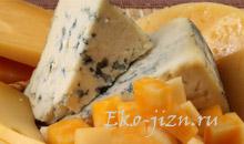 сыр с плесенью польза вред