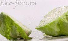 Овощи, которые полезно подвергать термической обработке