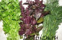 Растительная пища зеленого цвета и ее благотворное влияние на организм