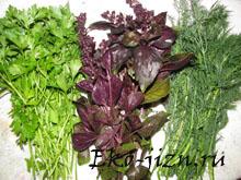 Растительная пища зеленого цвета — ее польза для организма
