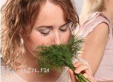 Выращивайте зелень на подоконнике