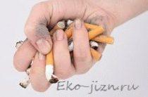 5 продуктов, помогающих в очищении организма от никотина и токсинов