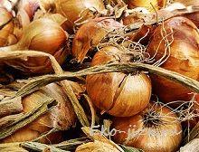 Применение луковой шелухи на огороде: борьба с вредителями