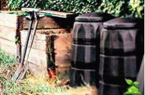 Органическая утилизация мусора: урны с червями