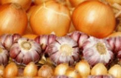 Отвар луковой и чесночной шелухи для комнатных цветов