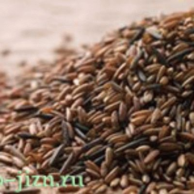 Польза и вред бурого риса. Рецепты.