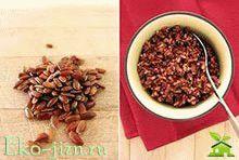 Польза и вред красного риса