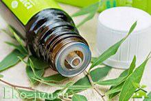Применение эфирного масла чайного дерева: ОРЗ, стоматология, косметология и не только