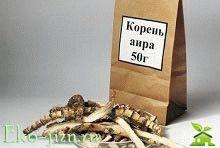 Лечебные свойства и противопоказания корня аира