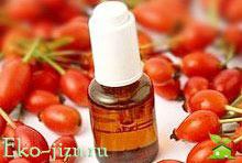 Лечебные и косметические свойства масла шиповника