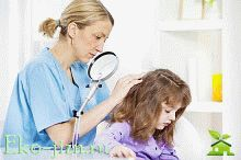 Педикулез: лечение в домашних условиях