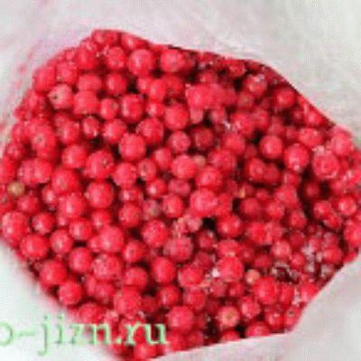 Заморозка красной смородины на зиму без веточек