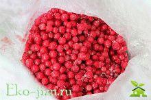 Заморозка красной смородины на зиму без веточек описание + пошаговые фото процесса