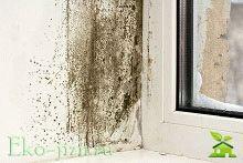 Как избавиться от сырости в частном доме