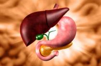 6 продуктов, которые помогут при холецистите. Как питаться, чтобы избежать воспаления желчного пузыря