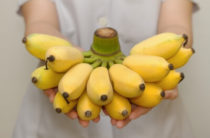 Как бананы действуют на наш организм: сердце, кости, сахарный диабет и др.